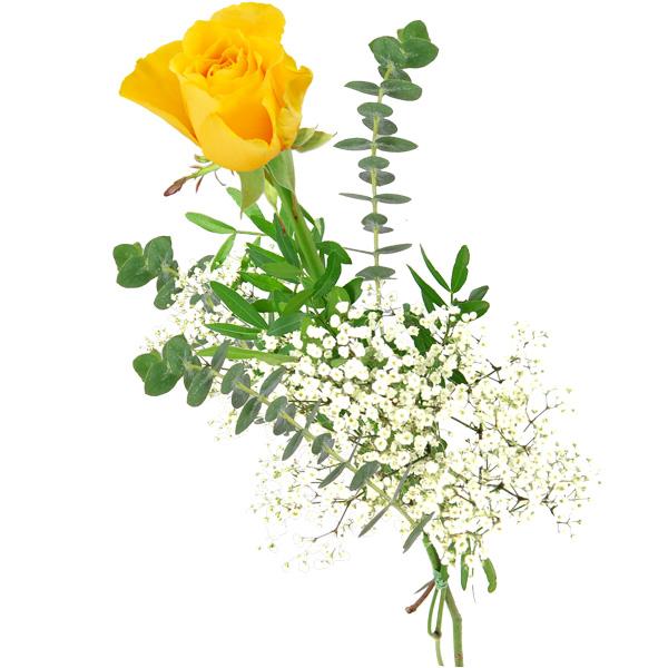Einzelne gelbe Rose