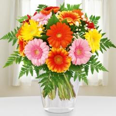 Blumenstrauß Gerberapracht