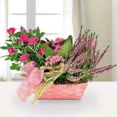 Pflanzgesteck Blütenfest