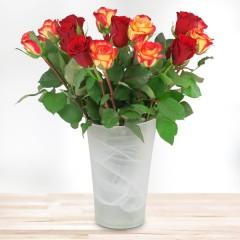 15 rot-orange Rosen