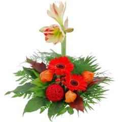 Blumenstrauß Amaryllistraum