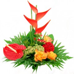 Blumenstrauß Tropic