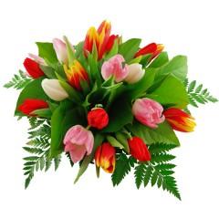 Blumenstrauß Großer Tulpengruß