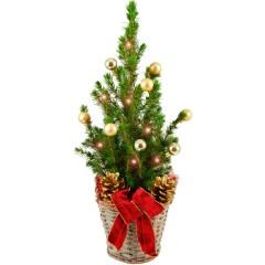 Mini-Weihnachtsbaum Frohes Fest & Lichterkette