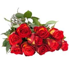 10, 15 oder 20 gelb-rote Rosen im Bund