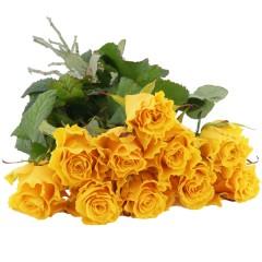10, 15 oder 20 gelbe Rosen im Bund