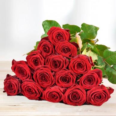 15 rote Rosen