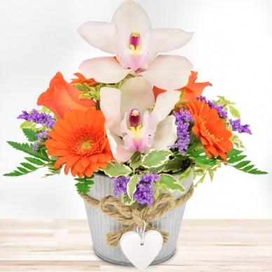 Orchideengruß Orange-Weiß