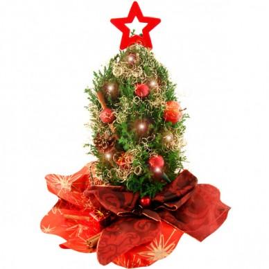 Mini-Weihnachtsbaum Lichterzauber & Lichterkette