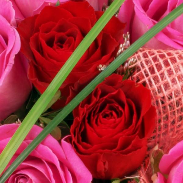 blumenstrau rosenherz rot rosa mit milka pralinen hugo nach preis blumenstr u e. Black Bedroom Furniture Sets. Home Design Ideas