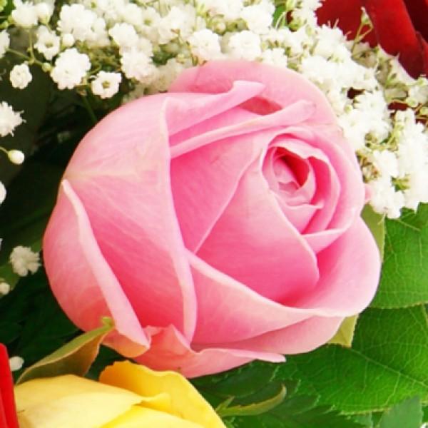 blumenversand mit pr chtigen rosen rosenstr u en und. Black Bedroom Furniture Sets. Home Design Ideas