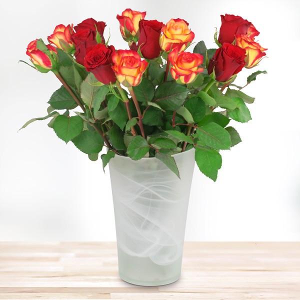 15 rot orange rosen nach sorte schnittblumen blumenversand blumen online. Black Bedroom Furniture Sets. Home Design Ideas