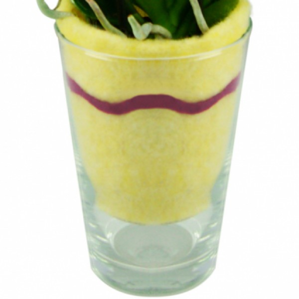 pflanzen in glasgefen sukkulenten im glas gro firma dpi. Black Bedroom Furniture Sets. Home Design Ideas
