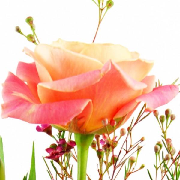 Blumenstrauss Herzensfreude Rosa Lila Blumenversand Bluvesa De
