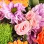 Chrysantheme & verzweigte Rose
