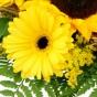 Gelbe Gerbera und Solidago