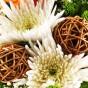 Weiße Chrysanthemen und braune Rebkugel