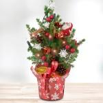 Mini- Weihnachtsbaum