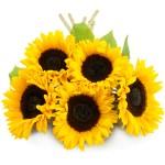 5, 7 oder 10 Sonnenblumen im Bund